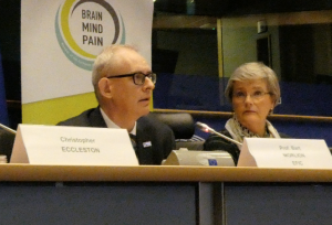 Professor Bart Morlion, President of the European Pain Federation (EPF)